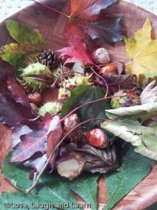 autumn leaves conkers