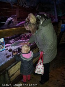 sealife centre blackpool