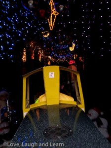 Christmas train ride