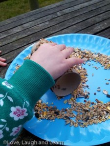Home Made Bird Feeders