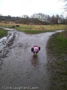 Reddish Vale mud